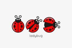 Marienkäfer-Logo Set On White Design-Hintergrund Stockfotos