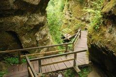Marienschlucht ravine in summer Stock Photo