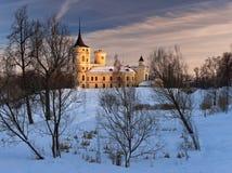 Mariental castle in winter Stock Photography