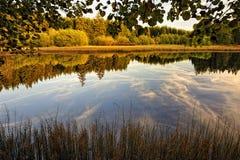 Marienteich e legno di autunno fotografie stock libere da diritti