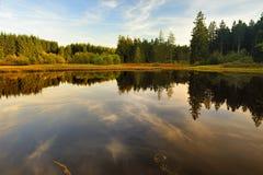 Marienteich und Herbstholz Stockbilder
