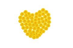 Marigold ανθίζει την καρδιά Στοκ φωτογραφία με δικαίωμα ελεύθερης χρήσης