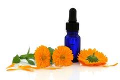 marigold λουλουδιών ουσίας Στοκ εικόνα με δικαίωμα ελεύθερης χρήσης