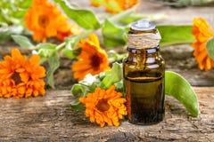 Marigold ουσιαστικό πετρέλαιο Στοκ φωτογραφία με δικαίωμα ελεύθερης χρήσης