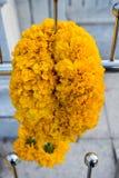 Marigold λουλούδι στο βωμό Στοκ εικόνα με δικαίωμα ελεύθερης χρήσης