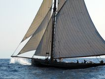 Marigold. Classic sailing yacht Marigold in a rough sea in regatta Stock Photography