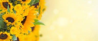 Marigold ANC ηλίανθων κήπος λουλουδιών Στοκ φωτογραφία με δικαίωμα ελεύθερης χρήσης