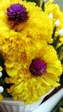 Marigold and Bachelor Botton garland. Flowers decoration Marigold and Bachelor Botton Royalty Free Stock Photo