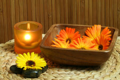 Marigold in bowl. Beautiful natural spa composition. Marigold flowers in wooden bowl, zen stones and candle light Royalty Free Stock Image