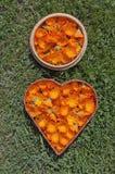 Marigold calendula fresh medical flowers in twi wooden baskets Stock Image