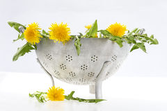 Marigold in colander for salad Royalty Free Stock Photography