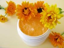 Marigold cream Stock Photos