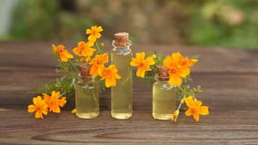 Marigold essential oil in bottle on table stock video footage