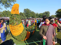 Marigold flower art at Rose Festival, Chandigarh. Visitors admiring flower art and posing for picture at Zakir Hussain Rose Garden during Rose Festival in Sector Royalty Free Stock Images
