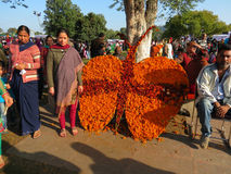 Marigold flower art at Rose Festival, Chandigarh. Visitors admiring flower art and posing for picture at Zakir Hussain Rose Garden during Rose Festival in Sector Stock Images