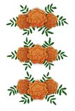 Marigold flower design elements. Corners and line. Vector illustration isolated on white Royalty Free Stock Photo