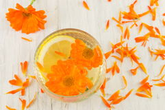 marigold flower herbal tea with lemon slices Royalty Free Stock Image