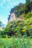 A marigold flower in the meadow with the rock mountian backgroun. A marigold flower in the meadow with the rock mountian and sky background Royalty Free Stock Image