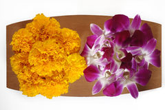 Marigold flower and purple orchid flower Royalty Free Stock Photography