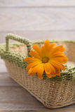 Marigold flowers in a basket Stock Photography