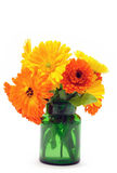 Marigold flowers bouquet Royalty Free Stock Image
