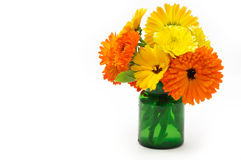Marigold flowers bouquet Royalty Free Stock Photo