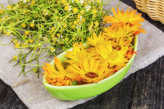 Marigold flowers in bowl with dry chamomile on the background Stock Image