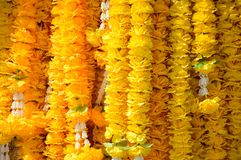 Marigold flowers garland. Texture background stock images