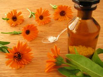 Marigold flowers and homeopathic pills Royalty Free Stock Images