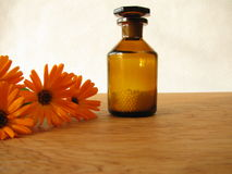 Marigold flowers and homeopathic pills in bottle Stock Image