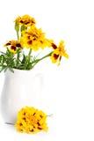 Marigold flowers in vase Stock Photo