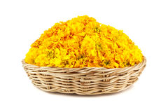 Marigold flowers in a wicker basket. Isolated on white background Stock Image