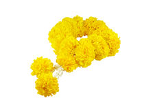 Marigold garland (with clipping path) Stock Images