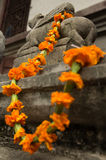 Marigold garland Royalty Free Stock Photos