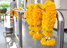 Marigold garlands Royalty Free Stock Photography