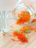 Marigold herbal tea Stock Image