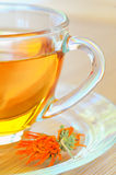 Marigold herbal tea Stock Images