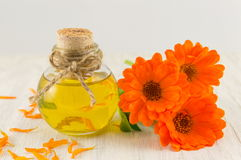 Marigold oil with a fresh flower bouquet. Natural cosmetics royalty free stock photography