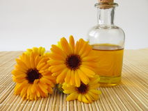 Marigold oil Stock Images