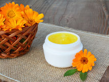 Marigold  ointment Stock Images