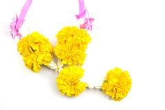Marigold with ribbin on white background Stock Images