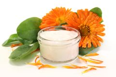 Marigold salve. A pot marigold salve with fresh blossoms Stock Images
