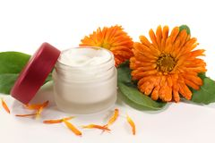 Marigold salve. A pot marigold salve with fresh blossoms Stock Photography