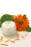 Marigold salve. A pot marigold salve with fresh blossoms Royalty Free Stock Images