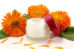Marigold salve. A pot marigold salve with fresh blossoms Stock Photos