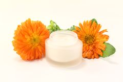 Marigold salve with flowers and leaves. Fresh marigold salve with Calendula flowers and leaves on a bright background Royalty Free Stock Photography