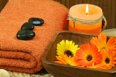 Marigold spa Royalty Free Stock Image
