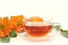 Marigold tea Stock Photography