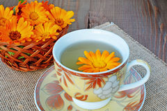 Marigold tea Royalty Free Stock Photography