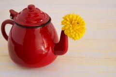 Marigold tea Stock Photos